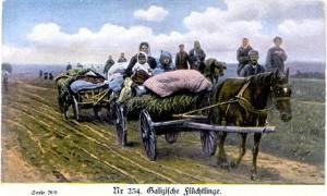 GalicianRefugees_site